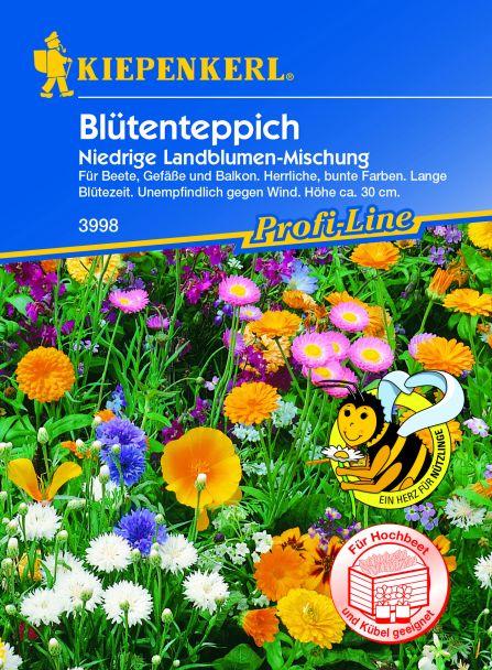 'Blütenteppich' Niedrige Landblumen-Mischung