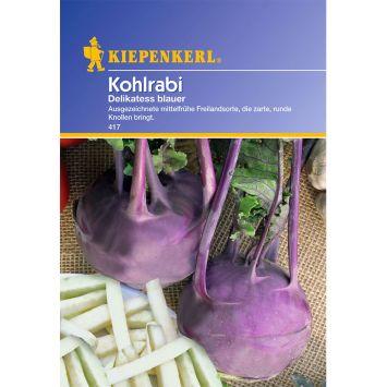 Kohlrabi 'Delikateß blauer'