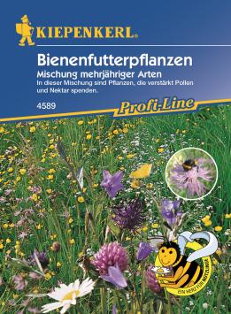 Bienenfutterpflanzen 'Mischung, mehrjährig'