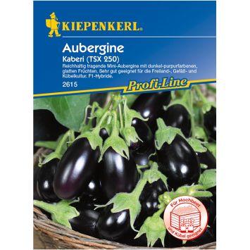 Aubergine 'Kaberi' F1