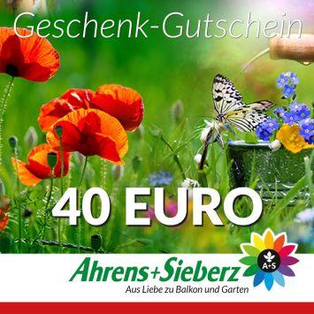 Geschenk-Gutschein, Wert 40 Euro Sommerfreude