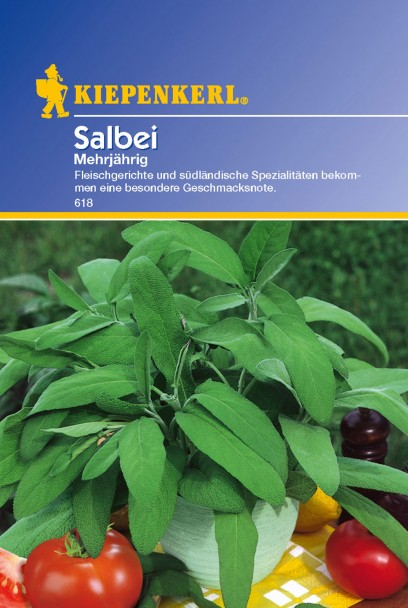 Salbei 'Mehrjährig'