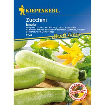 Zucchini 'Ismalia' F1
