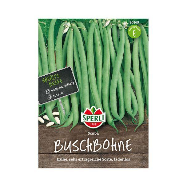 Buschbohnen 'Scuba'