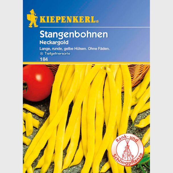 Stangenbohnen 'Neckargold'