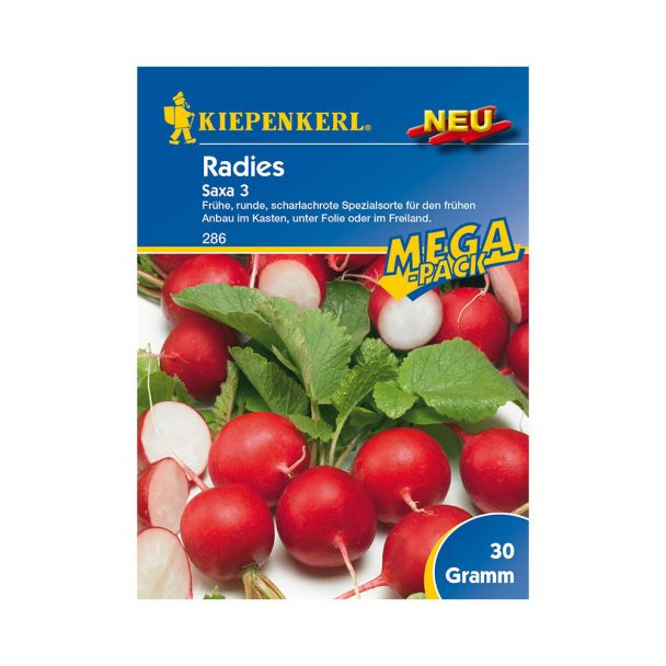 Radies 'Saxa 3' - MEGA-Pack