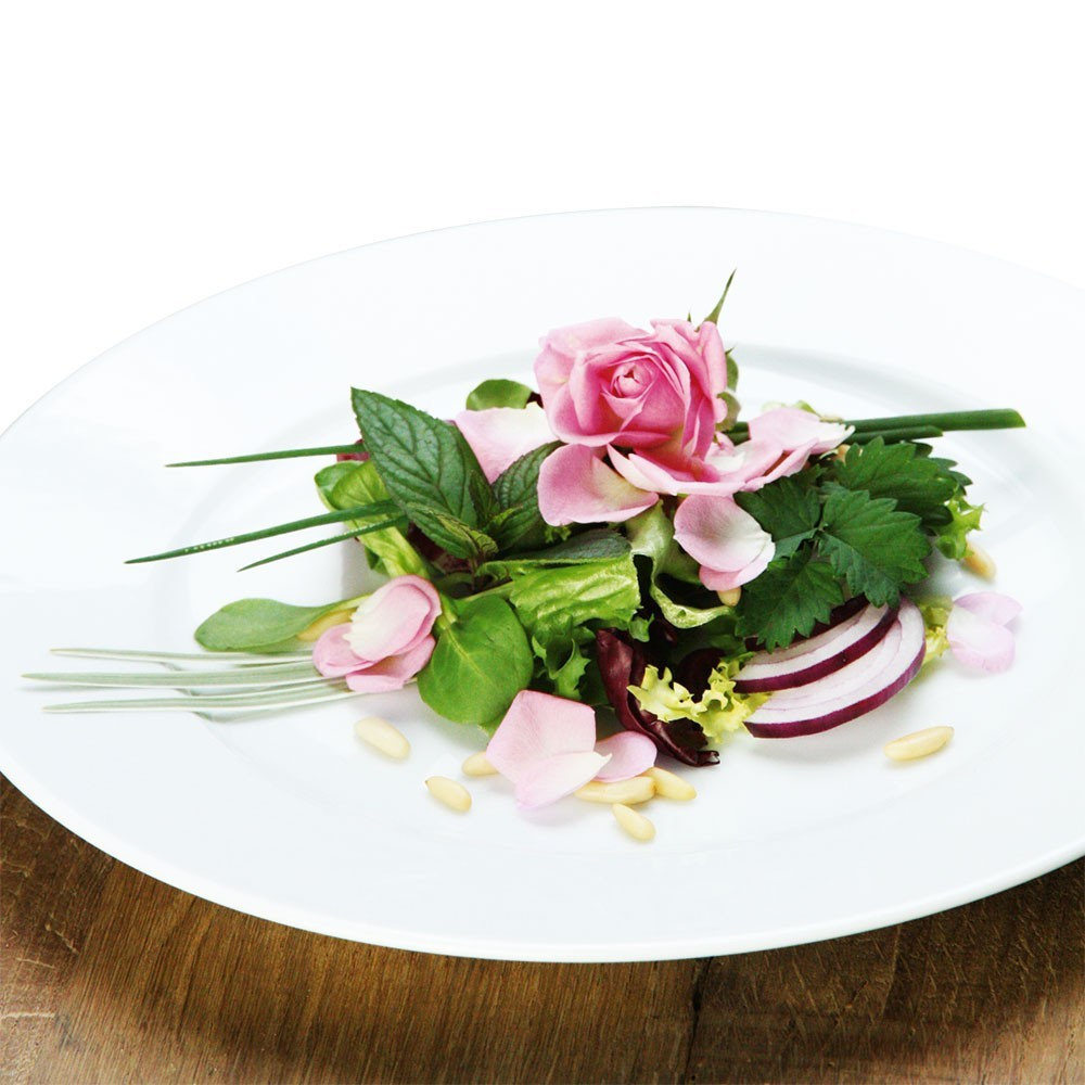 Gourmet-Rose 'Rosella®'