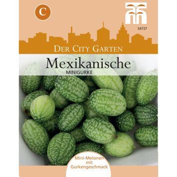 Mexikanische Minigurke Cucamelon