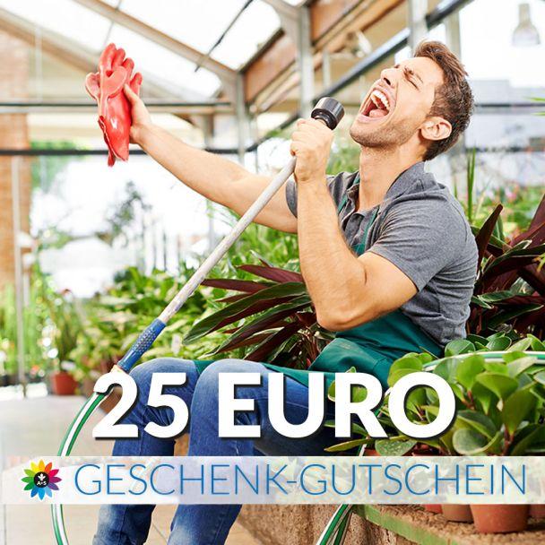 Geschenk-Gutschein, Wert 25 Euro Saenger
