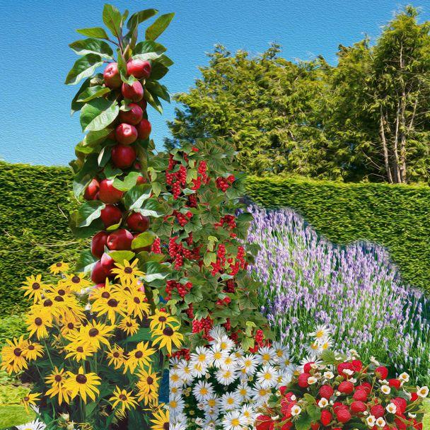 Nasch- und Blüh-Garten