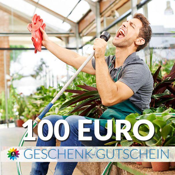 Geschenk-Gutschein, Wert 100 Euro Sänger