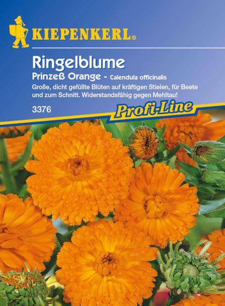 Ringelblume 'Prinzeß Orange'