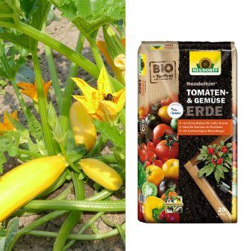Set-Preis: 2 x Culinaro-Gold F1 + 1 x NeudoHum® Tomaten- und Gemüseerde, 20 Liter