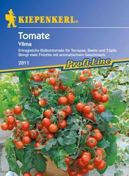 Tomaten (Balkontomaten) 'Vilma'