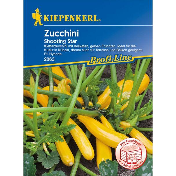 Zucchini 'Shooting Star' F1