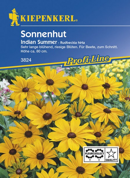 Sonnenhut 'Indian Summer'