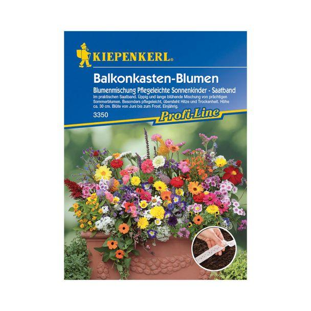 Balkonkastenblumen 'Sonnenkinder' (Saatband)