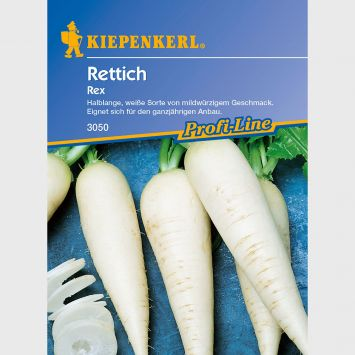 Rettich 'Rex'