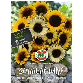 Schnitt-Sonnenblumen-Mischung 'SPERLI's Farbenzauber', F1