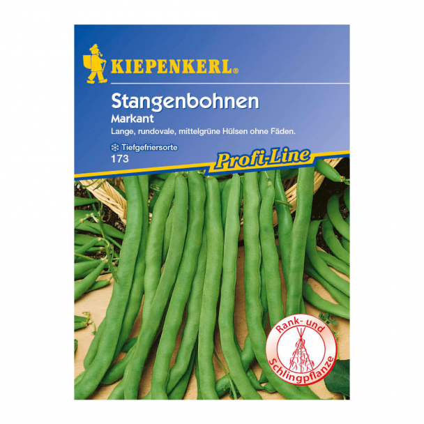 Stangenbohnen 'Markant'