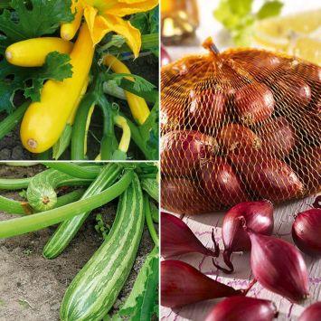 Set-Preis: 2x Culinari Green + 2x Culinari Gold + 1x Rote Steckzwiebeln