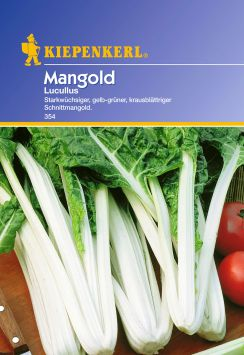 Mangold 'Lucullus'