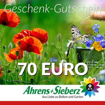 Geschenk-Gutschein, Wert 70 Euro Sommerfreude