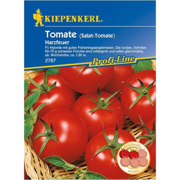 Tomaten 'Harzfeuer' - F1