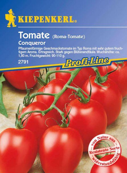 Tomaten (Eiertomaten) 'Conqueror' F1