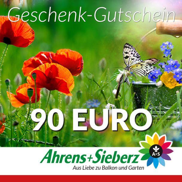 Geschenk-Gutschein, Wert 90 Euro Sommerfreude