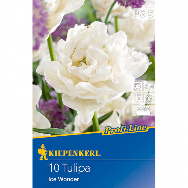 Profi-Line Tulipa Ice Wonder