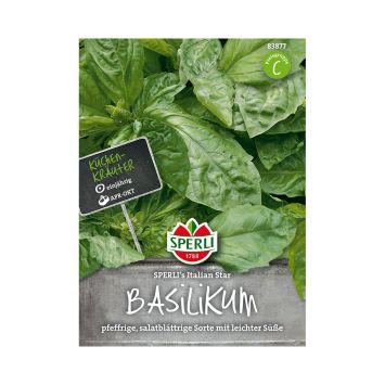 Basilikum 'SPERLI´s Italien Star'