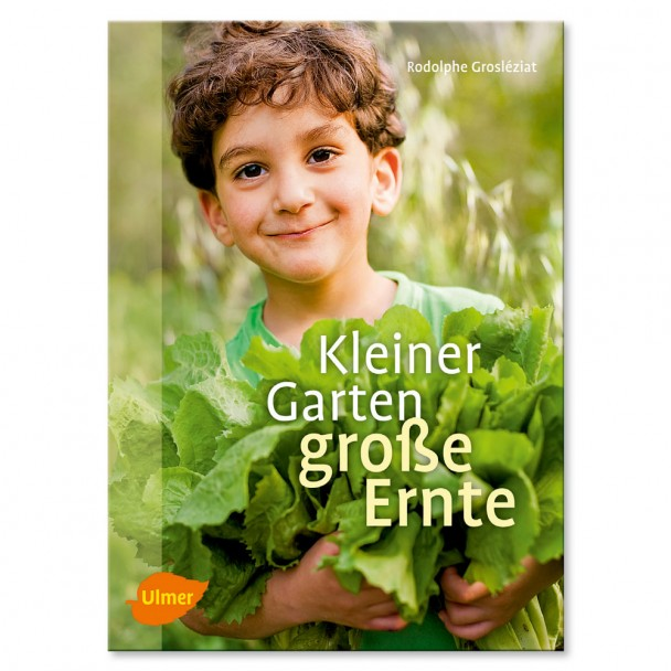 Buch 'Kleiner Garten, große Ernte'
