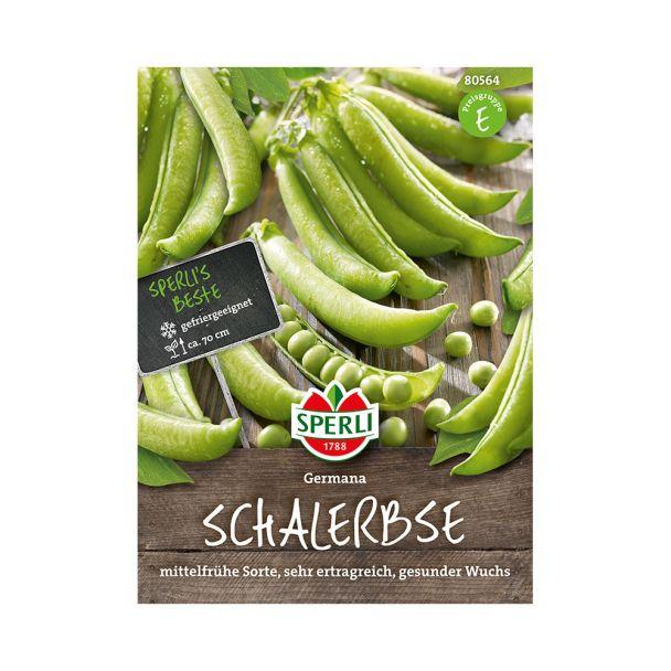 Schalerbse 'Germana'