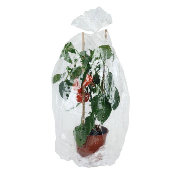 Pflanzenschutzfolie, 41 x 500 cm
