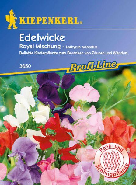 Edelwicken 'Royal Mischung'