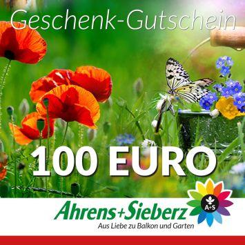 Geschenk-Gutschein, Wert 100 Euro Sommerfreude