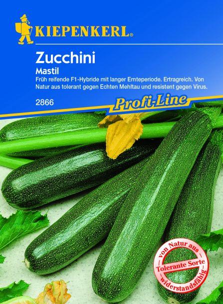 Zucchini 'Mastil F 1'