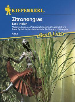 Zitronengras 'East Indian'