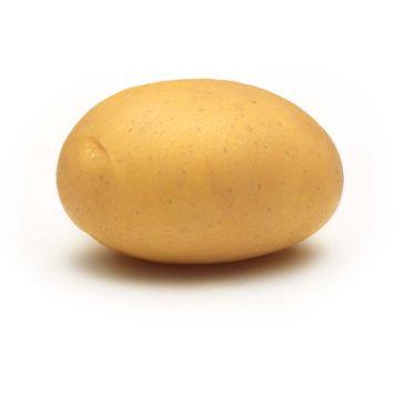 Almonda, Sehr früh, 2 kg (1 kg / € 3,60)