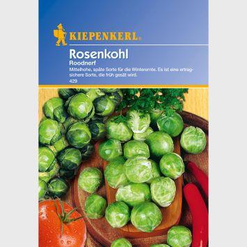 Rosenkohl 'Roodnerf'