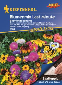 Blumenmix Last Minute Saatteppich