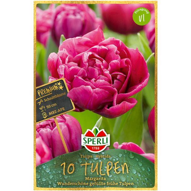 Gefüllte frühe Tulpen 'Margarita'