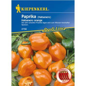 Paprika 'Habanero orange'