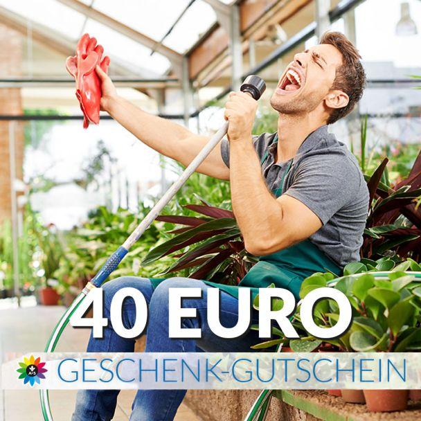 Geschenk-Gutschein, Wert 40 Euro Sänger