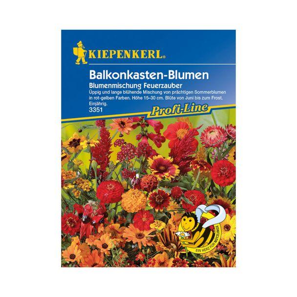 Balkonkasten-Blumen 'Blumenmischung Feuerzauber'