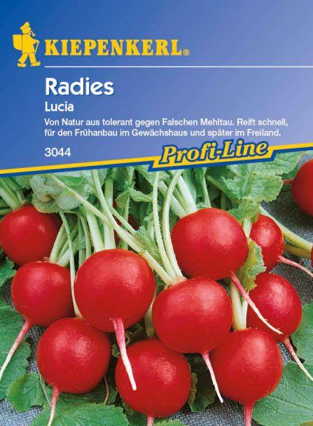 Radies 'Lucia F 1'
