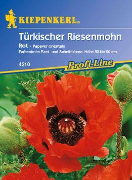 Türkischer 'Riesenmohn rot'