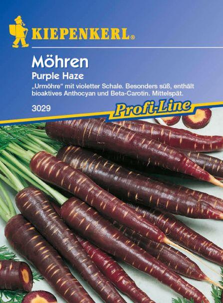 Möhren 'Purple Haze' - F1