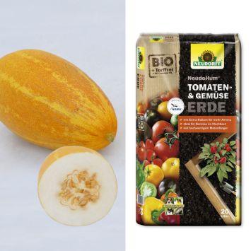 Set-Preis: 2 Gurmelo - Melonen-Gurken + Erde
